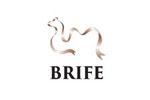 Belt and Road International Food Expo / BRIFE 2018. Логотип выставки