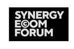 Synergy Insight Forum 2016. Логотип выставки