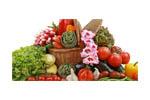 Мир здорового питания 2014. Логотип выставки