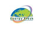 ENERGY FRESH 2010. Логотип выставки
